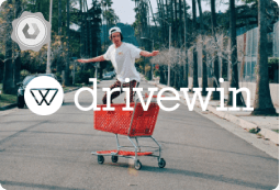 Drivewin